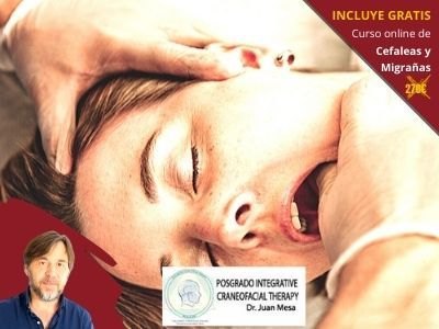 INCRAFT-Terapia-Craneofacial-Juan Mesa-Curso-Kenzen-incluye-CEF